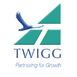 TWIGG - LOGO
